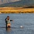 Stock Photo: Fly fishing in Mongolia
