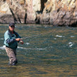 Fly fishing in Mongolia — Stok Fotoğraf #9113633
