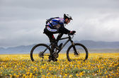 Spring adventure mountain bike competition — Stock Photo