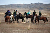 A traditional nomad horse game — Stock Photo