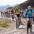 Mountain bike marathon in desert — Stock Photo #9191615