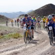 Постер, плакат: Mountain bike marathon in desert