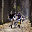 Mountain bike cross-country relay race — Stok fotoğraf
