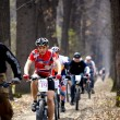 Mountain bike cross-country relay race — Zdjęcie stockowe