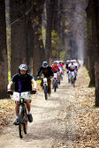 Mountain bike cross-country relay race — Stock Photo