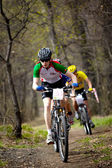 Corrida de revezamento do mountain bike cross-country — Foto Stock