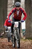 Bahar dağ bisikleti yarışması — Stok fotoğraf