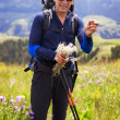 Hiker in mountains — Stock Photo