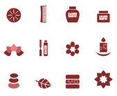 Spa & wellness icons set isolated on white ( brown ) — Stok Vektör