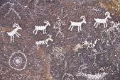 Desert Petroglyph — Stock Photo