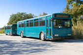 Two Blue Buses — Stock Photo