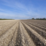 Chalky arable landscape — Stock Photo