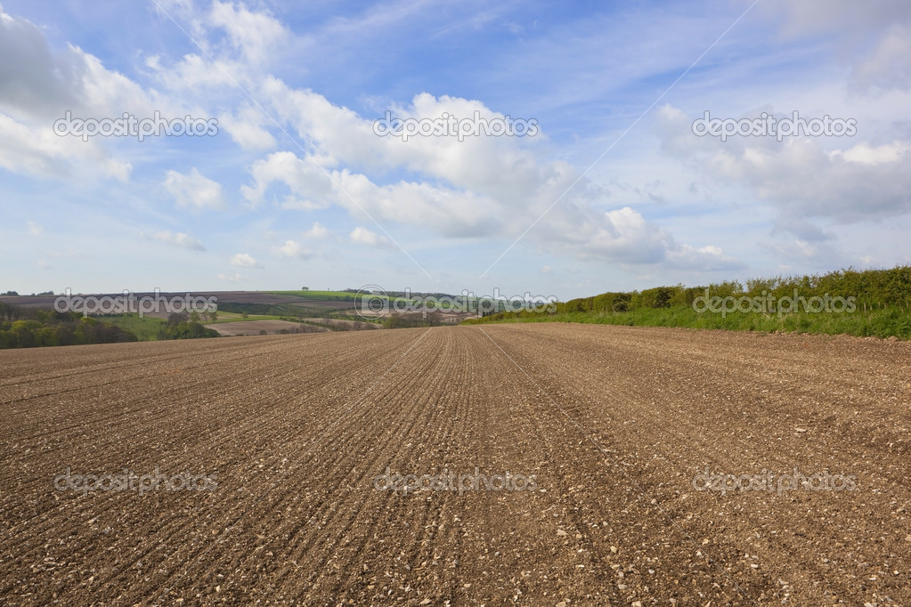 An agricultural landscape with newly cultivated chalky soil on a hillside in the yorkshire wolds england under a blue cloudy sky — Stock Photo #10559918