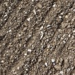 Stony earth background — Stock Photo