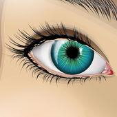 Woman blue eye — Stock Vector