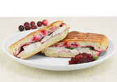 Turkey, spinach, onion, melted cheese and cranberry panini. — Stock Photo