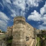Castello Ursino is a castle in Catania, Sicily, southern Italy — Stock Photo #9001616