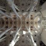 The ceiling of the Sagrada Familia in Barcelona, Spain — Stock Photo #9896032