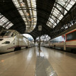 Stock Photo: Trains at the railroad station (Estacio de Francia)