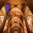 Inside the Cathedral of Barcelona — Stock Photo #9896979