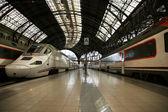 Trains at the railroad station (Estacio de Francia) — Stock Photo