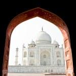 Taj Mahal, India, Agra. Image with copy-space — Stock Photo