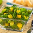 Watercress Mango Avocado Salad — Stock Photo