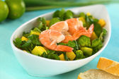 Shrimps on Watercress Salad — Stock Photo