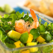 Shrimp on Watercress Salad — Stock Photo