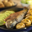 Fried Trout — Stock Photo