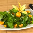Watercress and Physalis Salad — Stock Photo