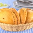 PeruviEmpanadas — Stock Photo #9403269