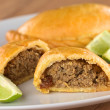 PeruviEmpanada — Stock Photo #9802696
