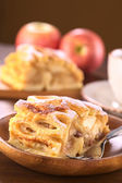 Apple Strudel with Raisins — Stock Photo