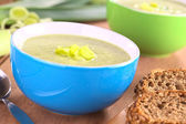 Leek Soup — Stock Photo