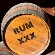 Rum Barrels — Stock Photo #10534011