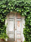 Arched Doorway — Stock Photo