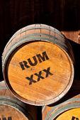 Rum Barrels — Stock Photo