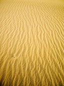 Golden Sand River — Stock Photo