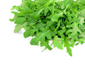 Fresh arugula on a white background — Stock Photo