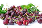 Cherries in water drops closeup — Stock Photo