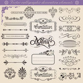 Vector calligraphic decoration elements set — Stock Vector