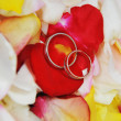 Rings  on roses petals — Stock fotografie