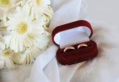 White gerbera and wedding rings — Stock Photo