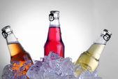 Bottles drink — Photo