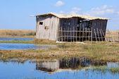Poor cane abode on rushy lake shore — Stock Photo