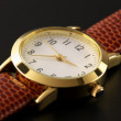 Wrist watch - Stock fotografie