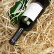 Wine bottles in straw - Photo
