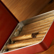 Cigars in box - Stock Photo