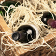 Picnic basket with wine — Foto de Stock
